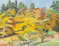Fall in West Dummerston